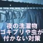 夜 洗濯物 干して ゴキブリ 虫 付かない 対策 対処法
